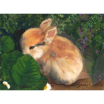 Bunny in the Garden_product